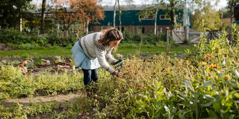 Aardpeer-Marleen Annema-websize-6001-crop