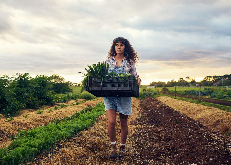 vrouw-loopt-door-akker-met-krat-verse-groenten