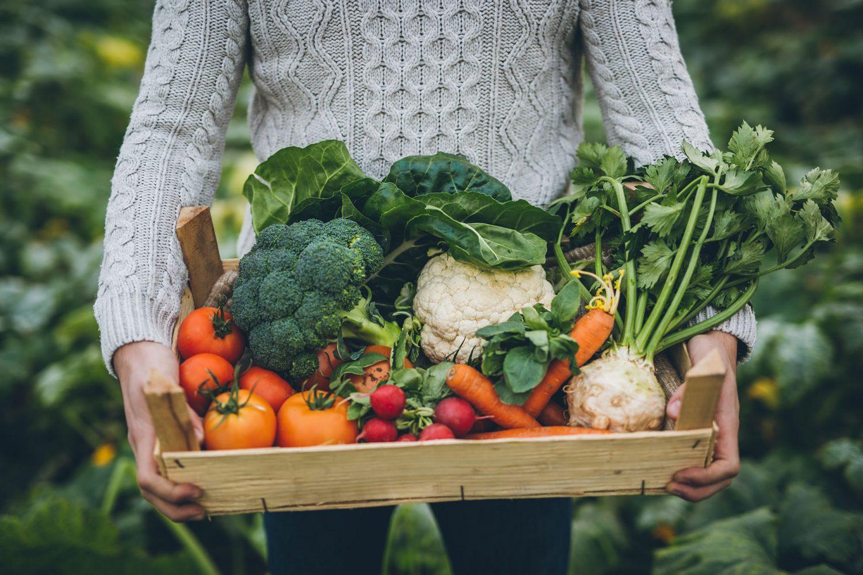 man-tilt-krat-verse-groenten